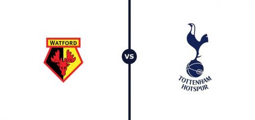 Watford v Spurs: Into the Hornets' Nest